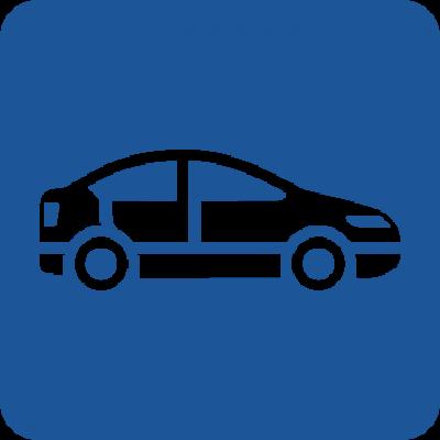 Леки автомобили (273)