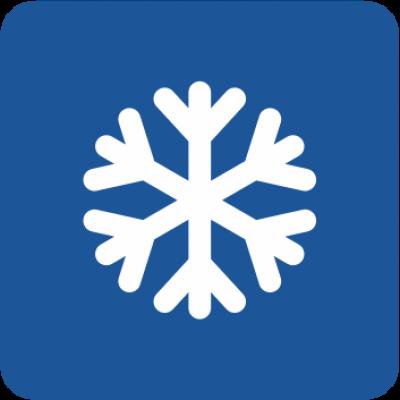 Зимни гуми (81)